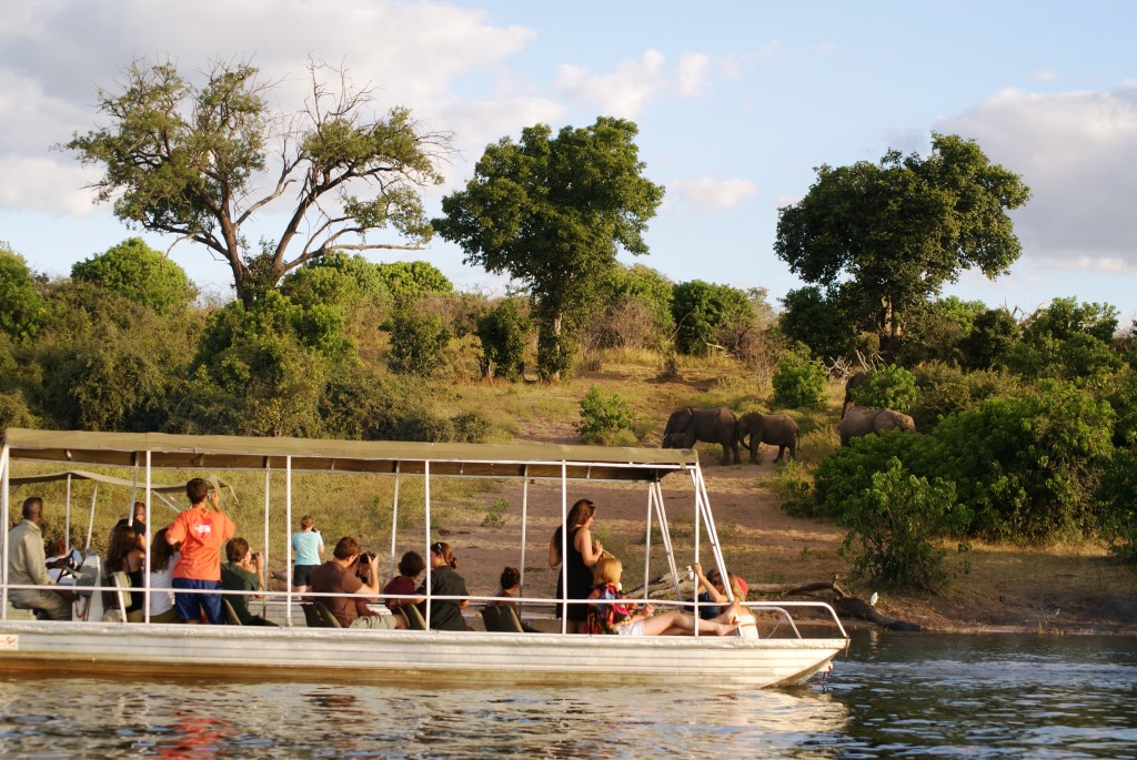 Jenman African Safaris gets reviewed by a Client… on African Safari Journals!