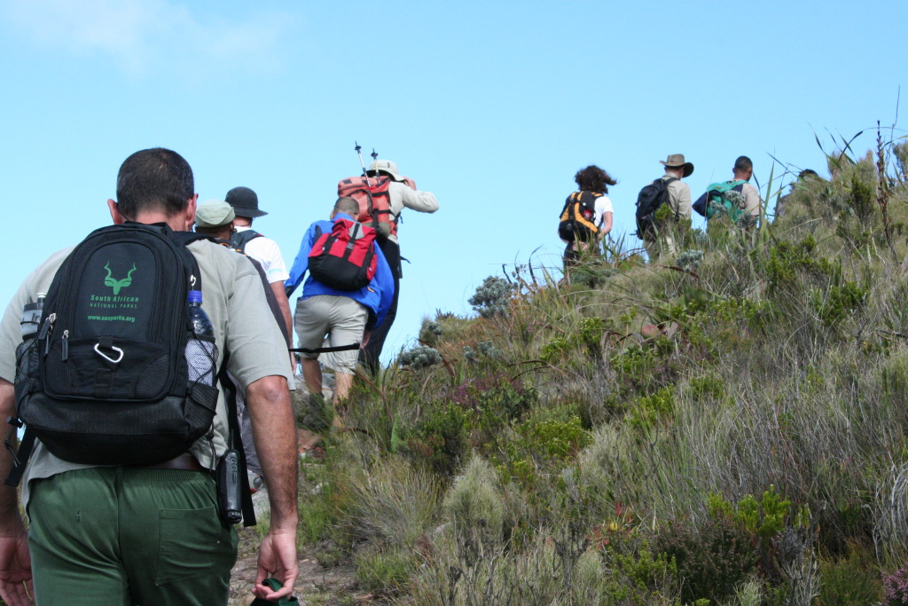 Are there any Elephants up there? A Table Mountain tour guide shares the joy he experiences taking visitors around.