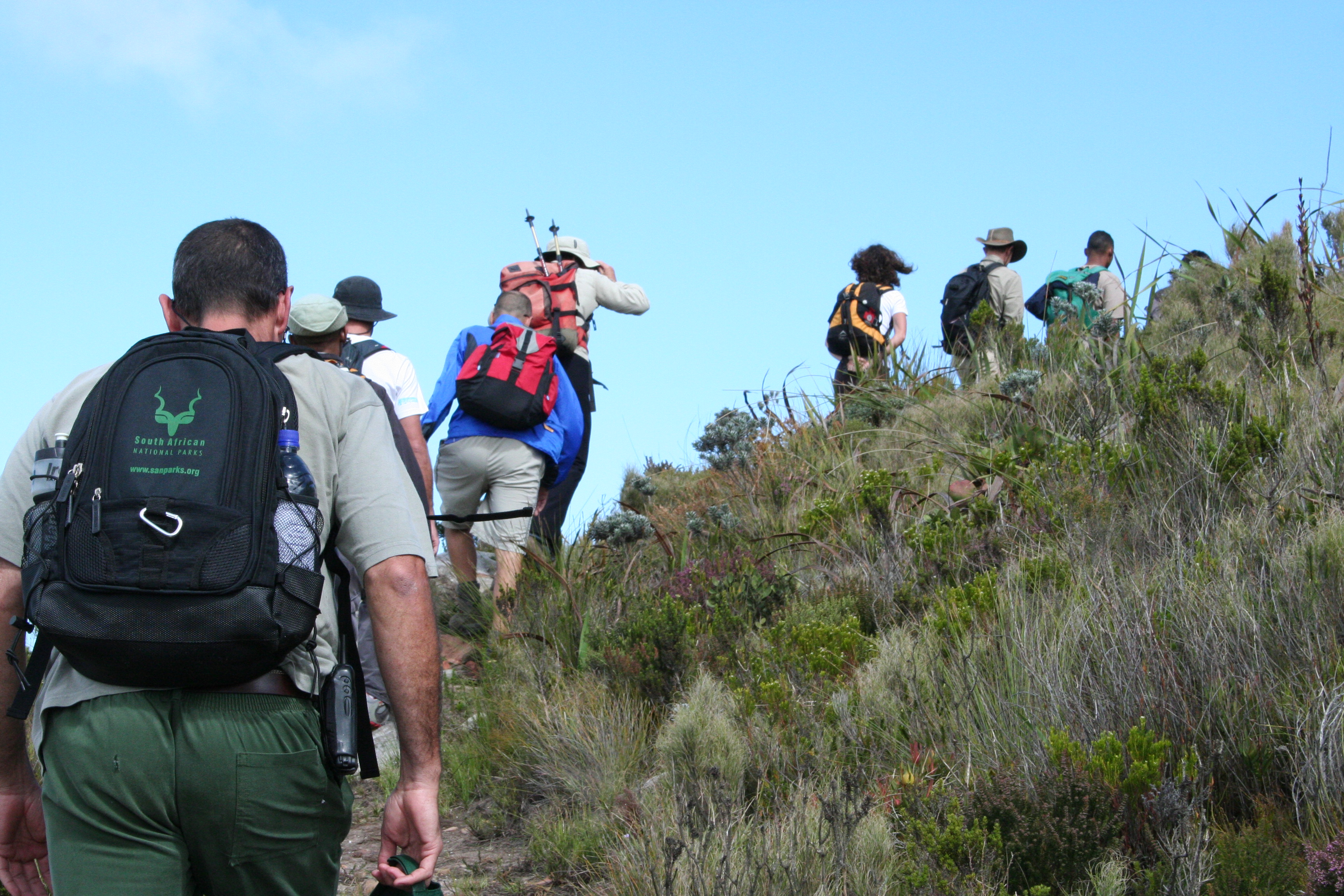 Are there any Elephants up there? A Table Mountain tour guide shares the joy he experiences taking visitors around. 34