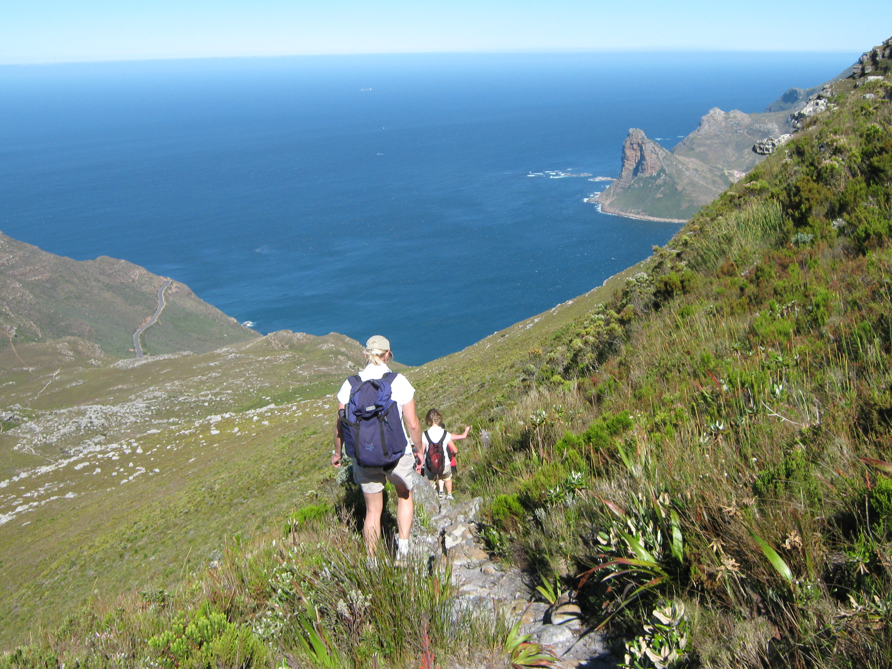Table Mountain Guides for hire… Hoerikwaggo Trail 1
