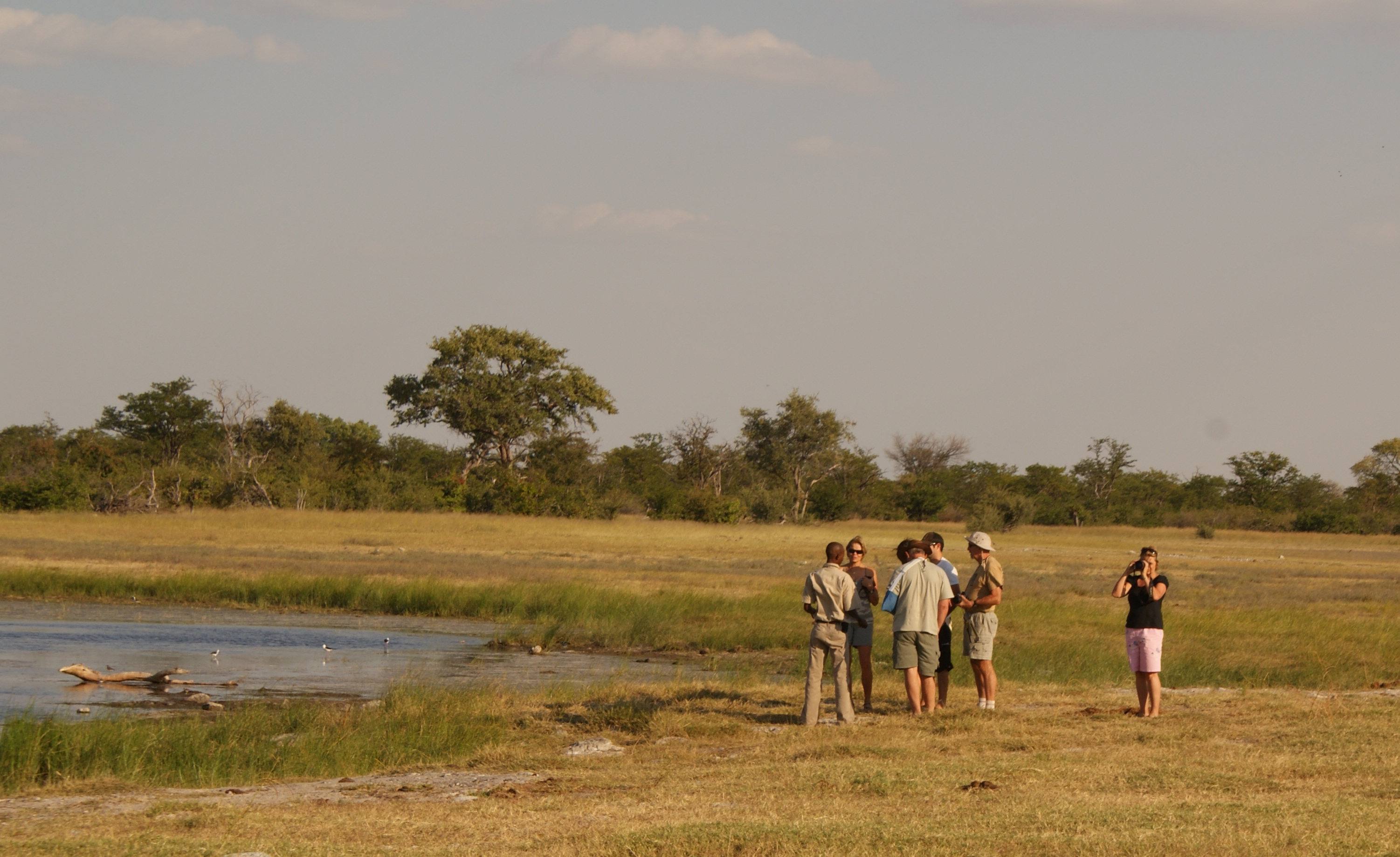 Jenman African Safaris Feedback on a Botswana Safari!!!
