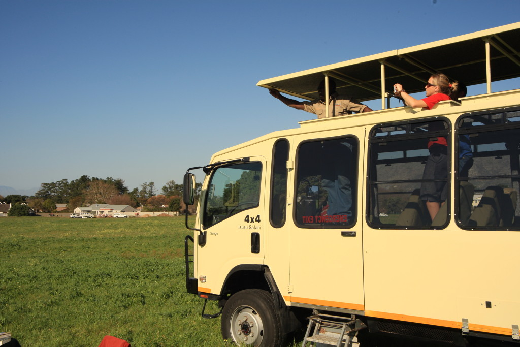 Travel around in comfort on our 12-seater custom built safari vehicle!