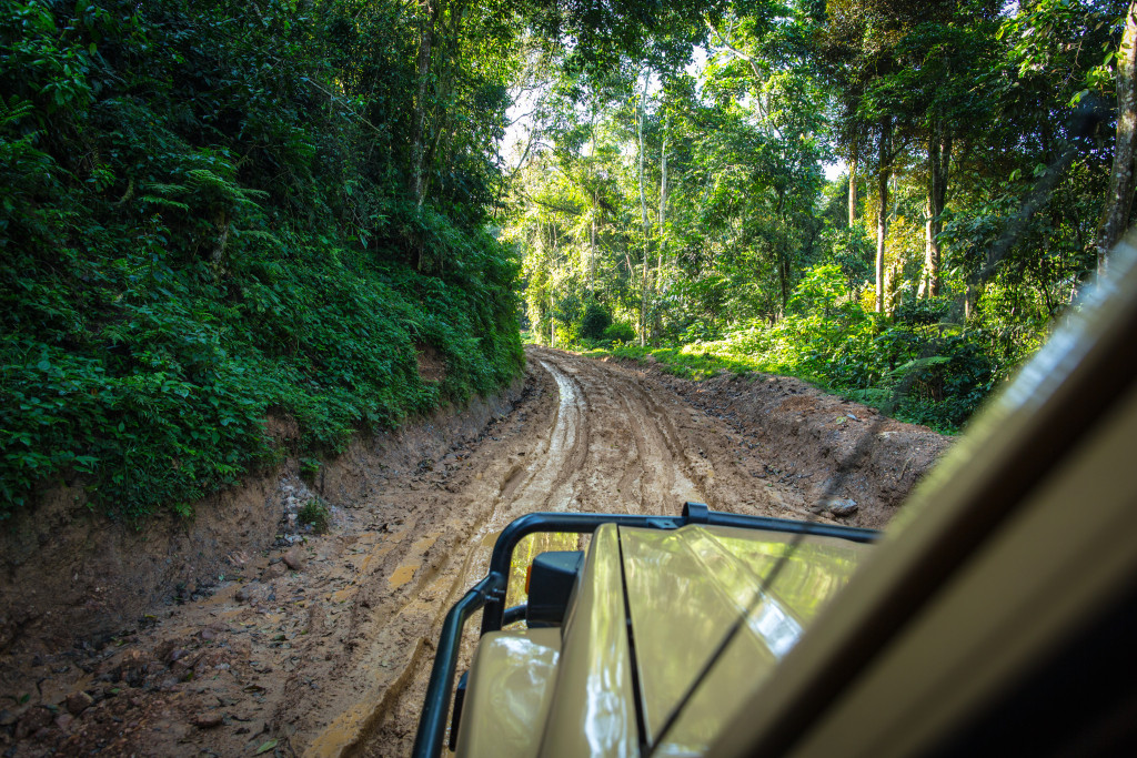 An Indiana Jones' like adventure through the Uganda Discoverer