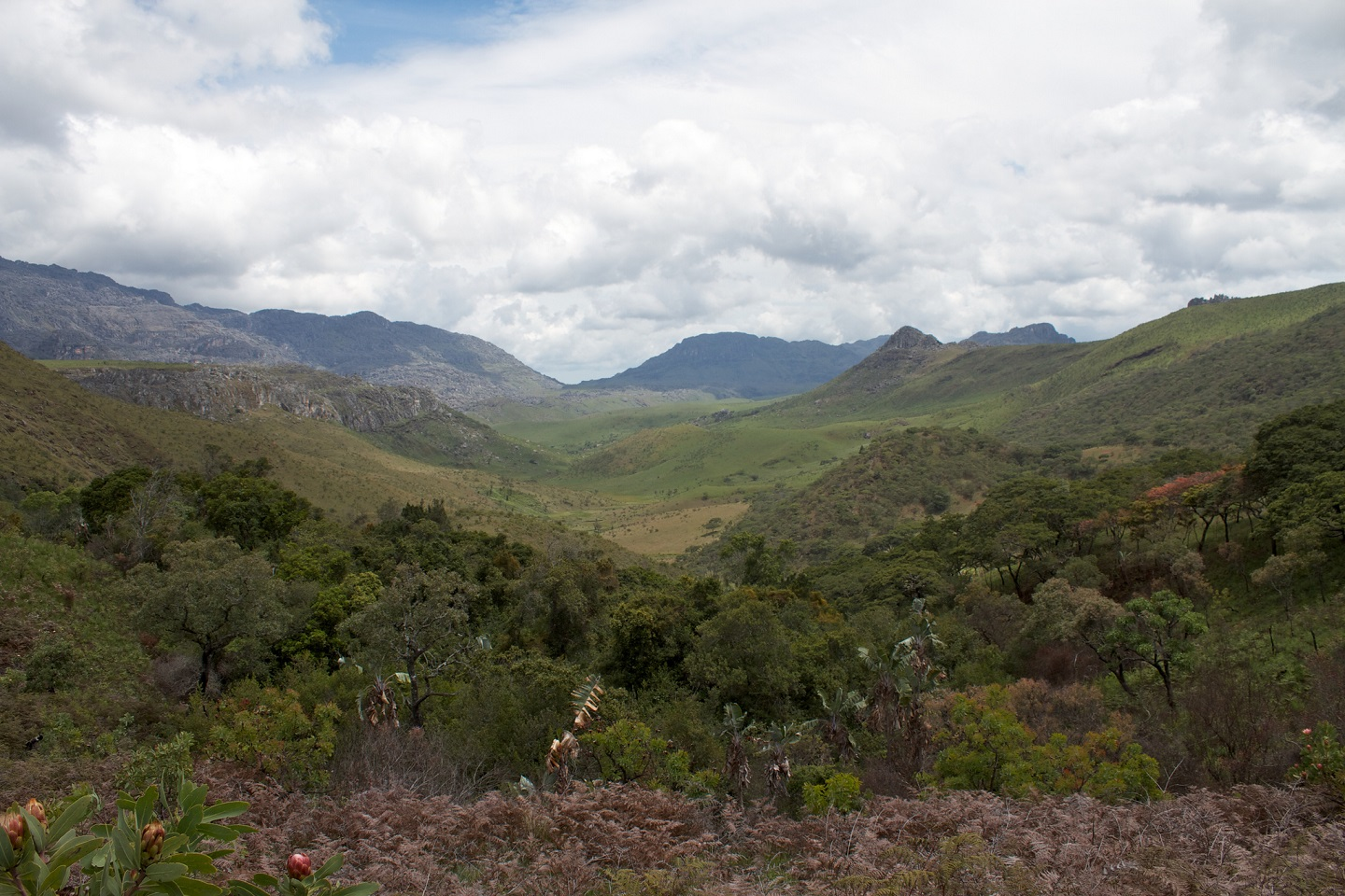 Eastern Highlands