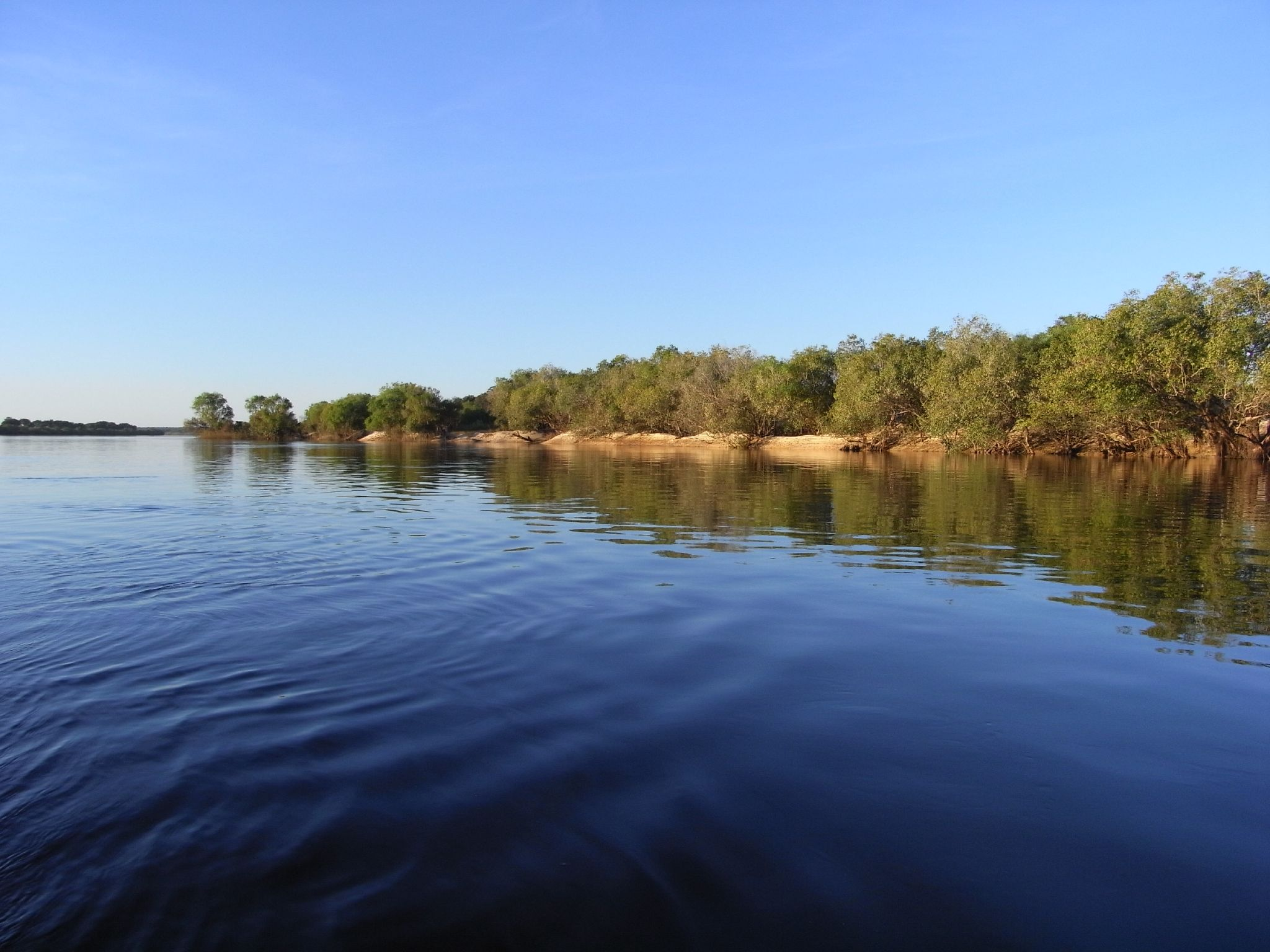 Zambezi River Stock Photos and Pictures Getty Images Pictures of zambezi river