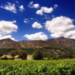 Franschhoek Wine Estate