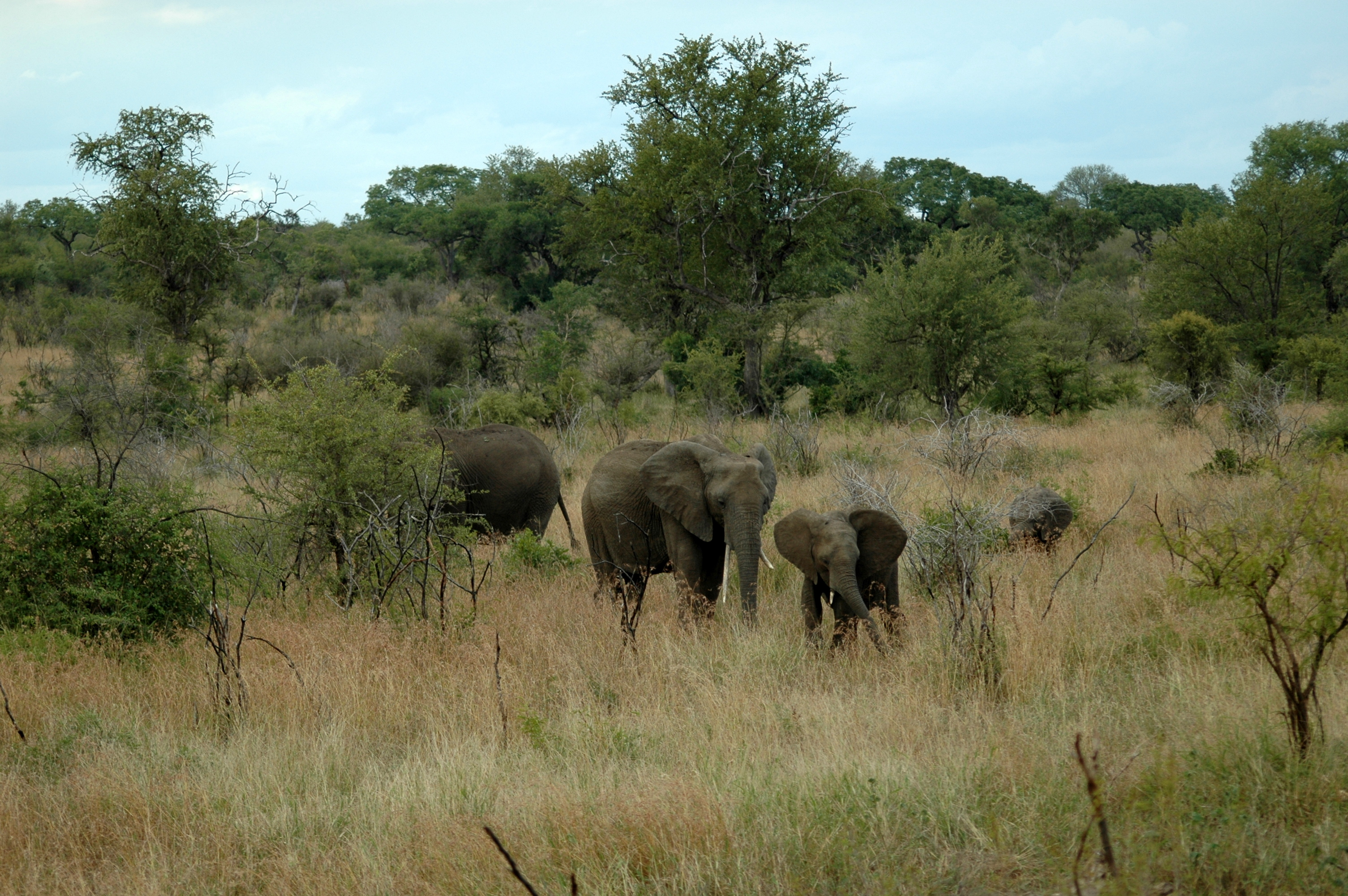 Southern Africa Travel Blog