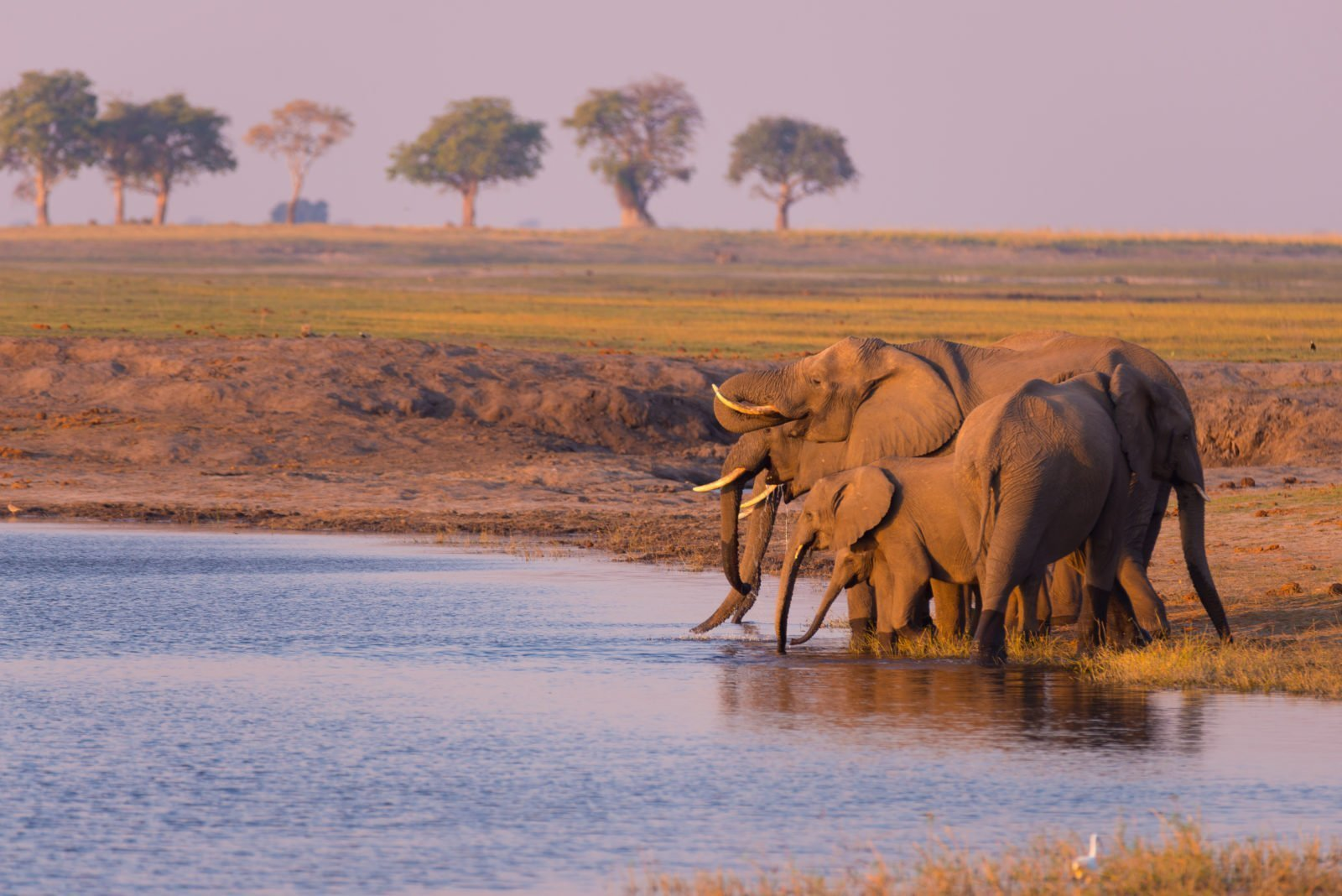 Our Best Guided Group Tours
