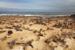 Colony of seals, Atlantic coast, Namibia