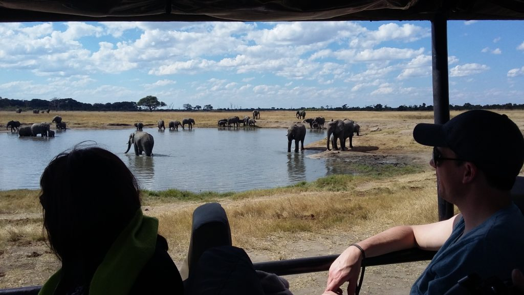 Experience Zimbabwe and Namibia with Jenman African Safaris 23