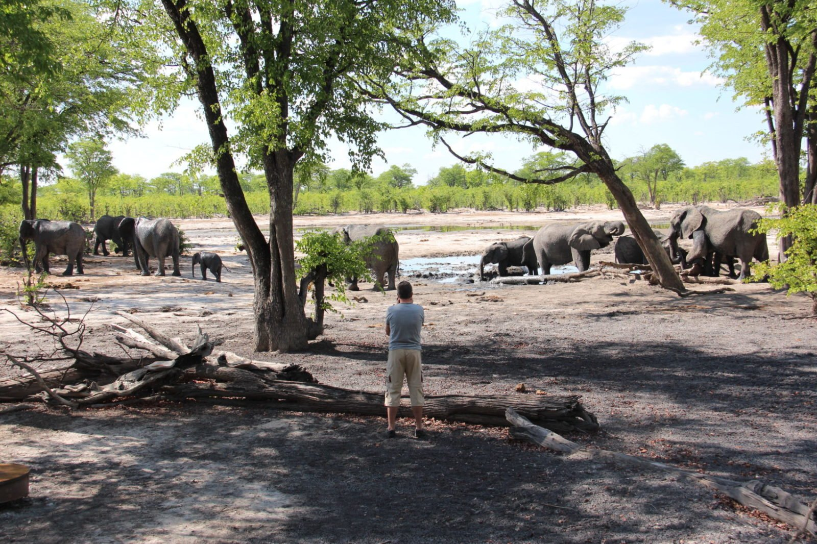 Agents Discover the Magnificence and Otherworldliness of the Makgadikgadi Pans