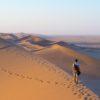 dunes of Sossusvlei Namib desert Namib Naukluft National Park Namibia.