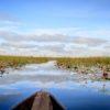 Mokoro boat trip in the Okavango Delta Botswana.
