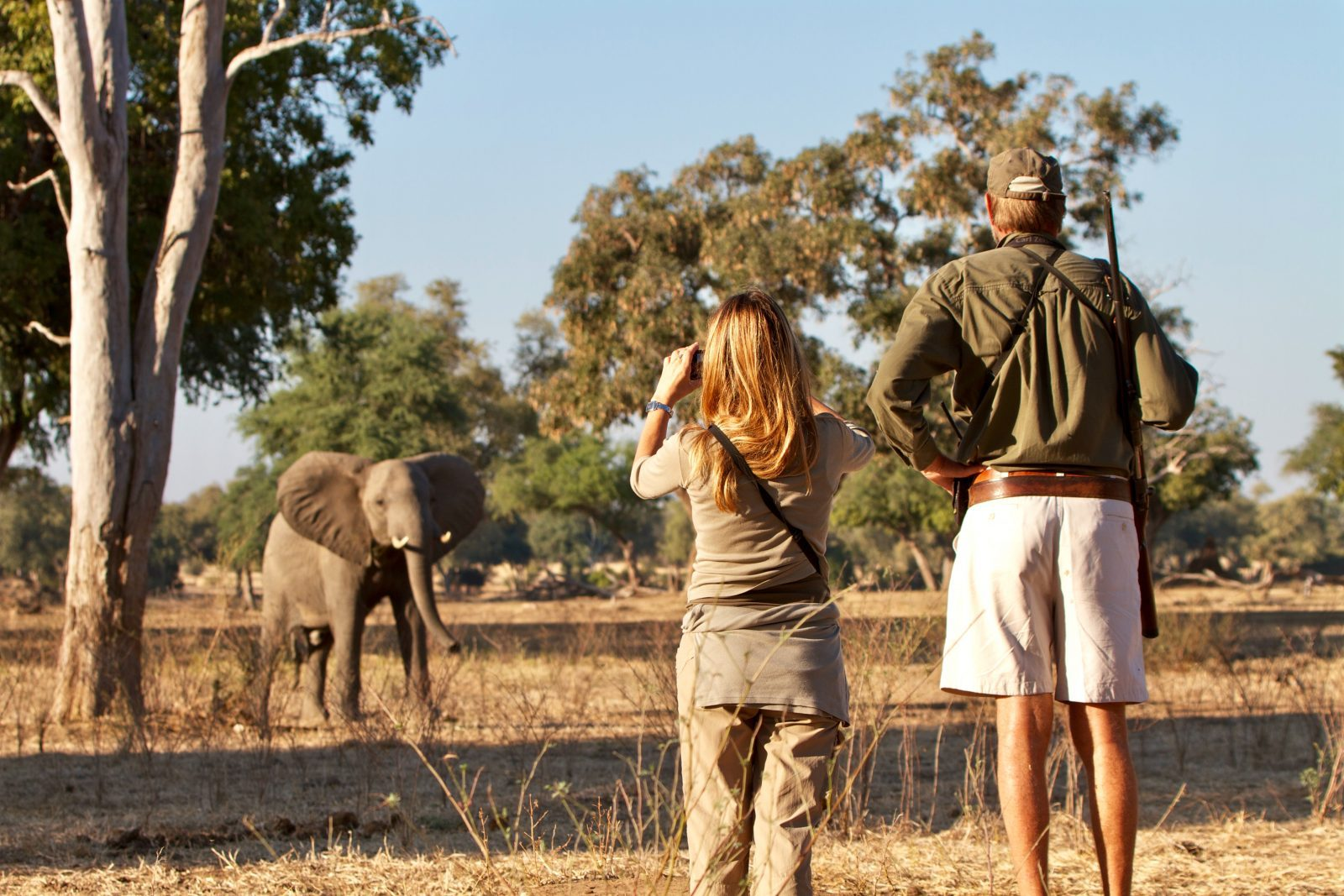 Elephant sighting on bush walk | Mana Pools, Zimbabwe