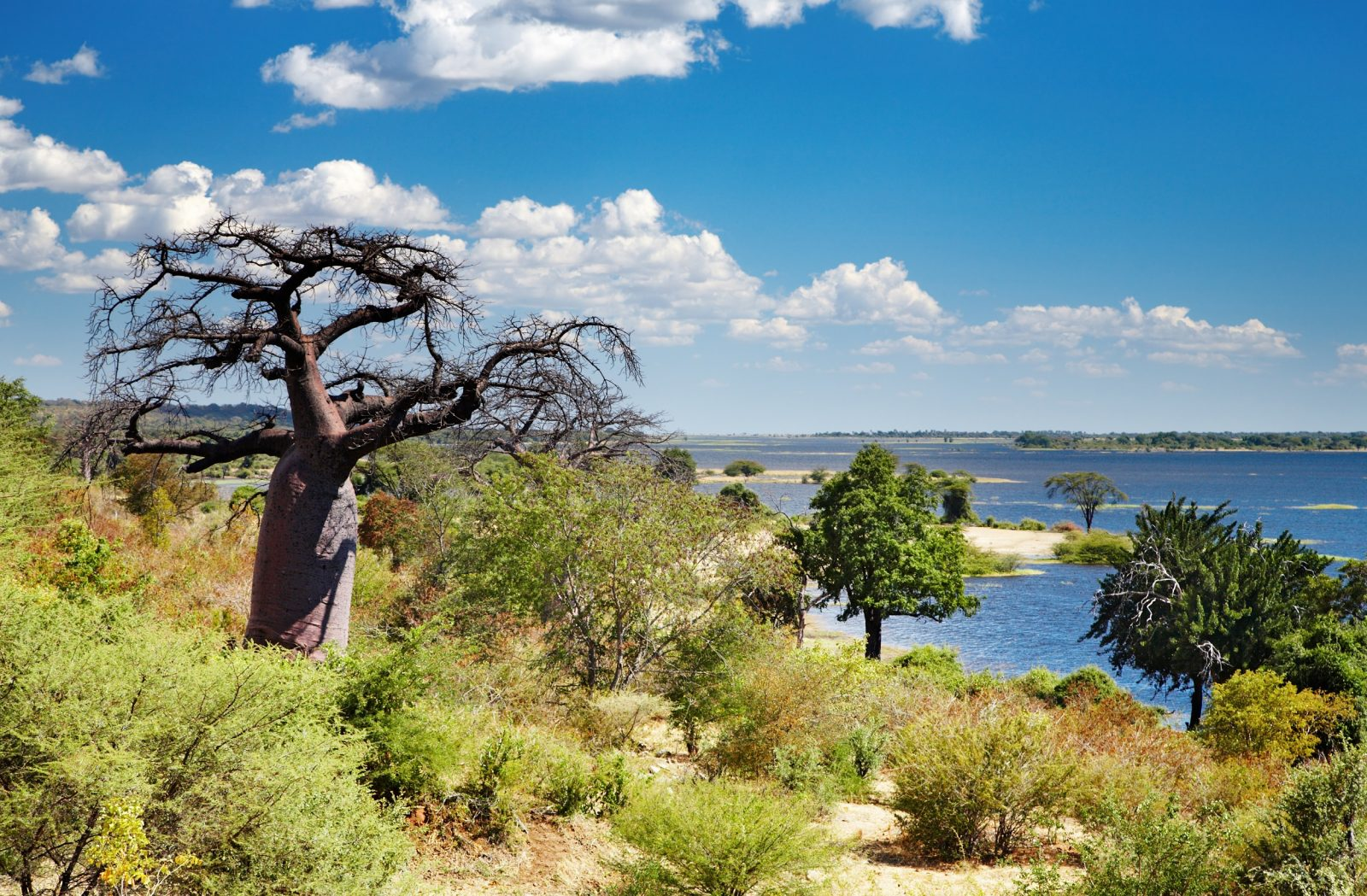 Seasons in Zimbabwe and Botswana