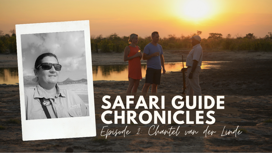 Safari Guide Chronicles