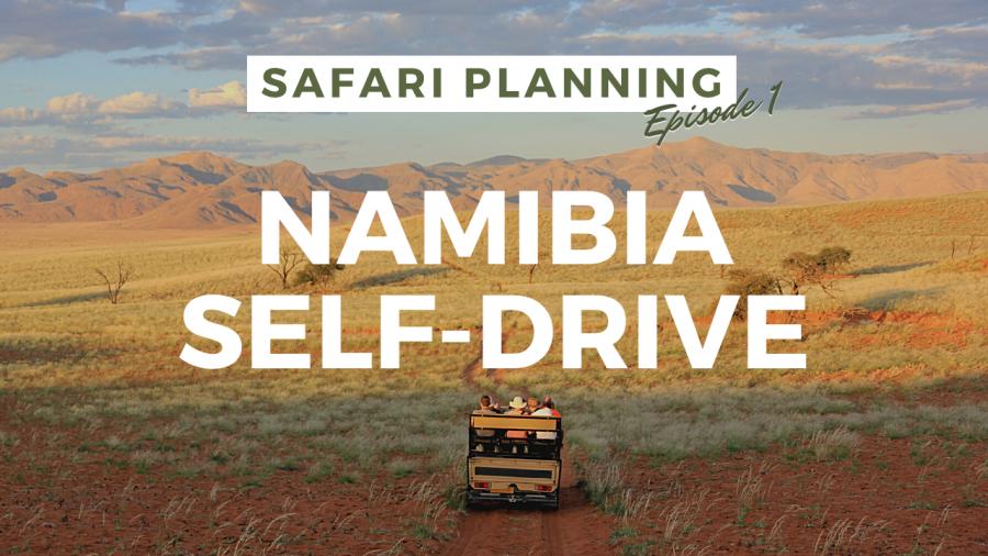 Safari Planning Namibia Self-Drive