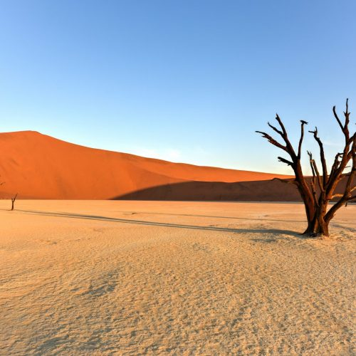 Namibia Self-Drive Adventure Deadvlei