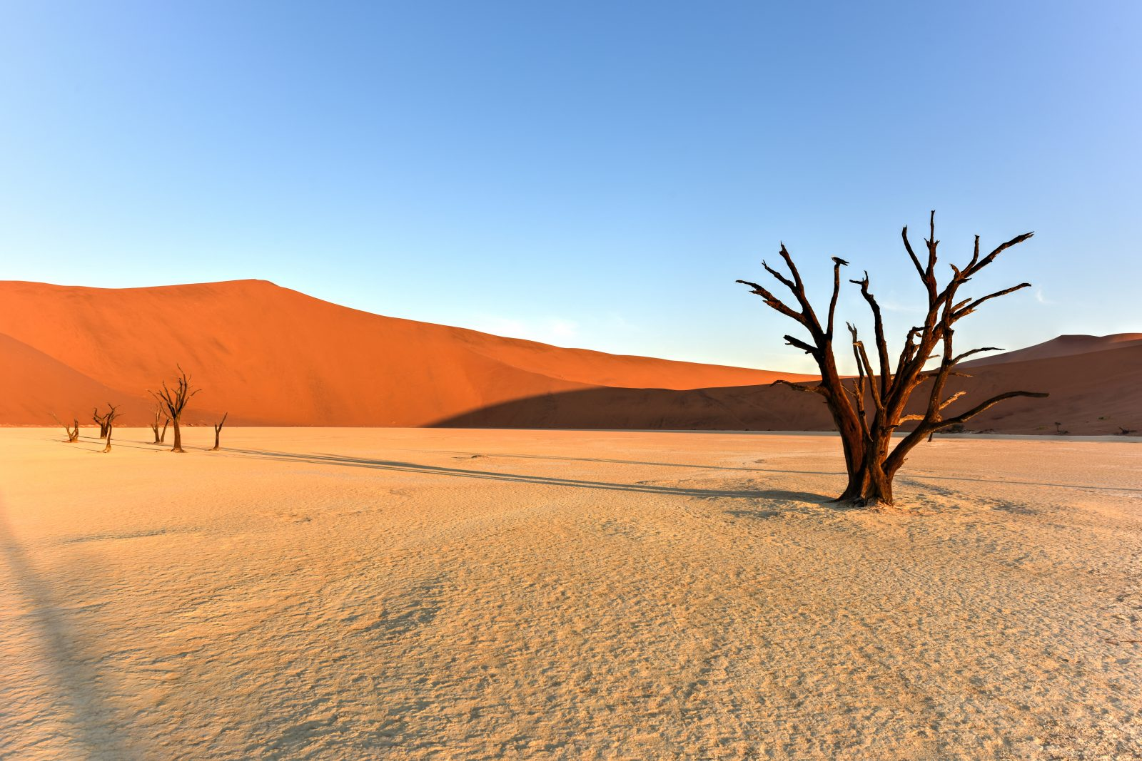 Namibia Self-Drive Adventure Deadvlei