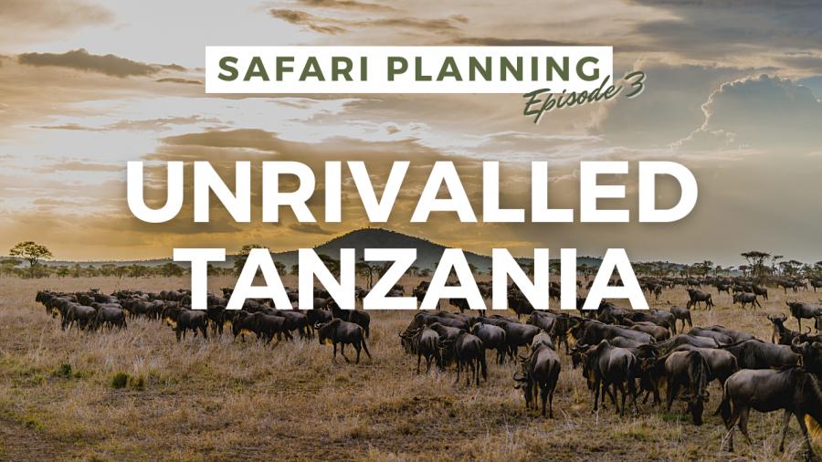 Safari Planning Unrivalled Tanzania
