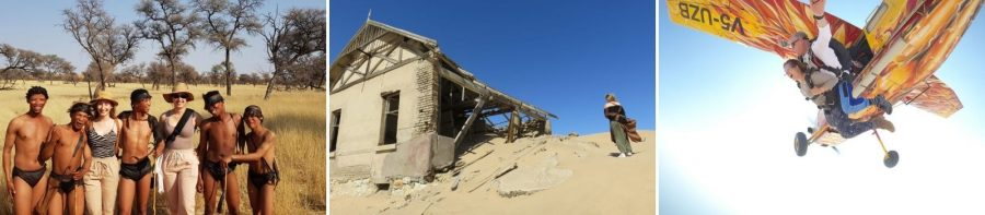 Safari Chronicles: Dunes of Namibia 6