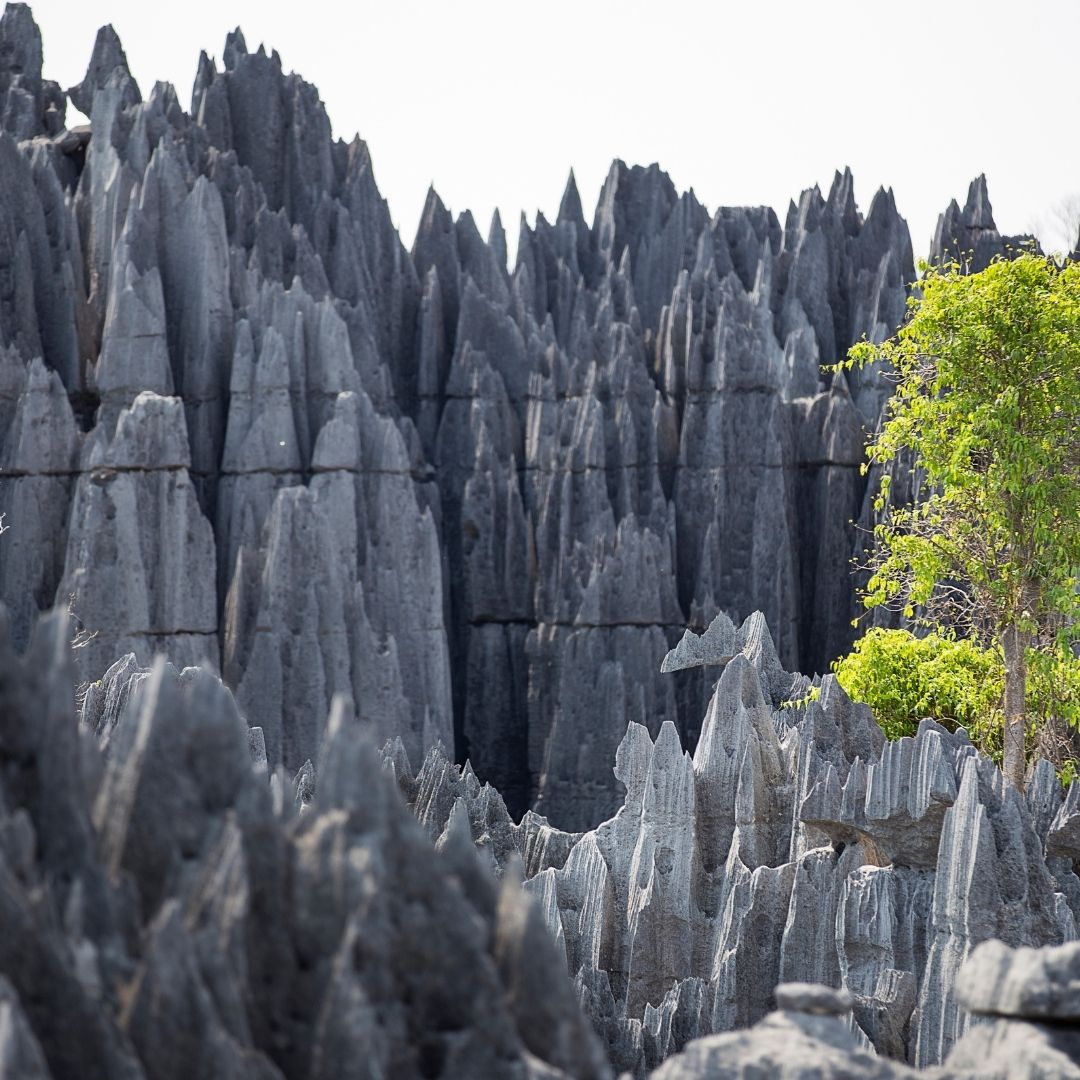 7 UNESCO African Wonders to Explore on Safari 18
