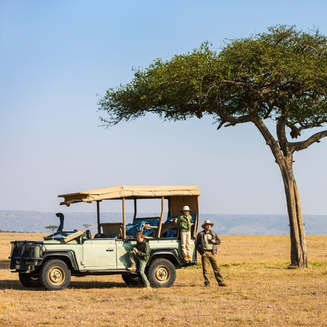 From the Armchair to the Safari Seat 15