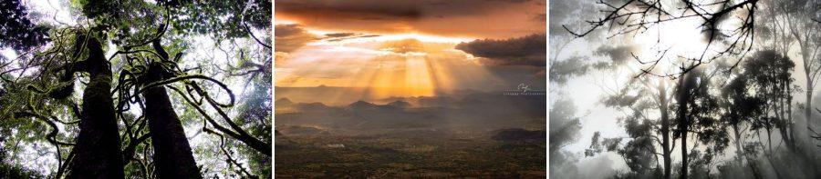 Featured Photographer: Lesanne Fowler, Zimbabwe 9