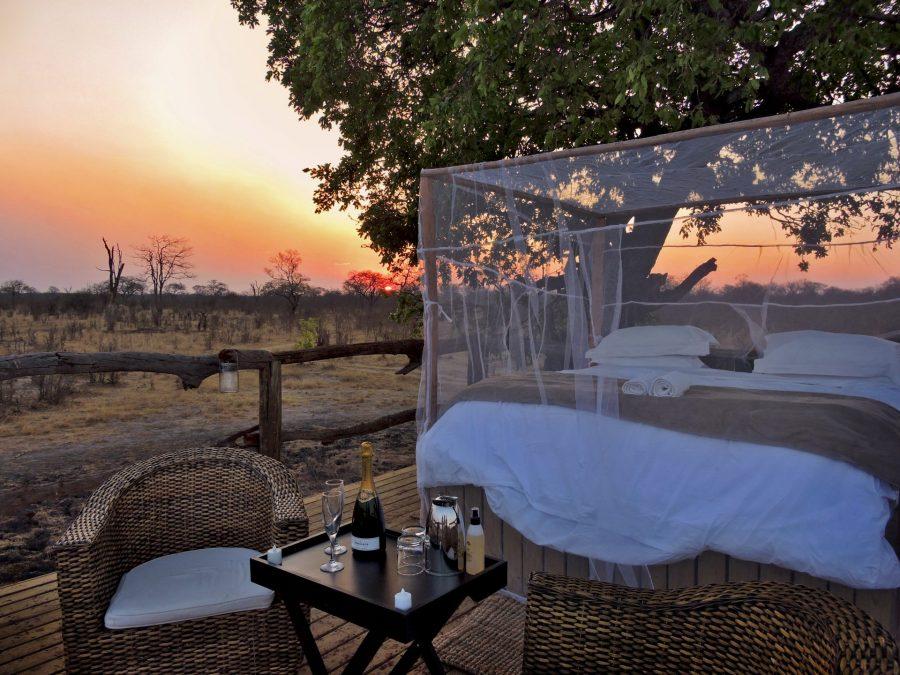 Best Places Beneath the Stars on Safari 5
